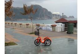 Cixpet elektrikli Bisiklet 48V 500W